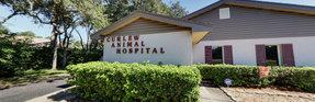 Curlew Animal Hospital