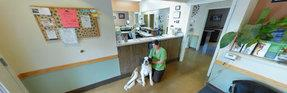 All About Pets Veterinary Hospital